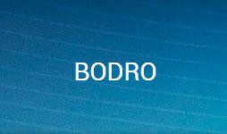 Bodro